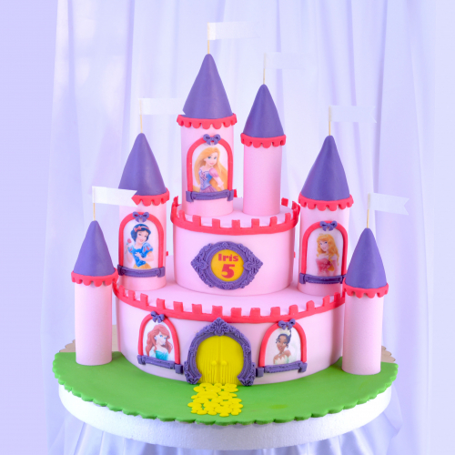 princess castle.jpg